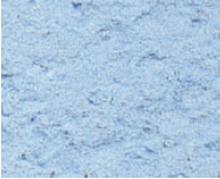 Picture of Parex Revlane + Ignifuge Taloche Fin: 1.0mm 25kg PB20 Sky Blue